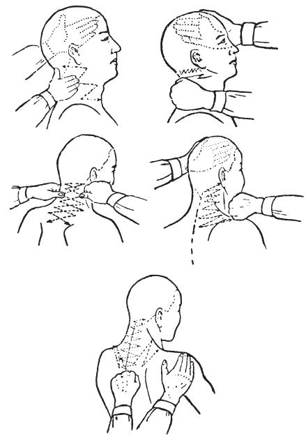 Китайское искусство целительства. История и практика врачевания от древности до наших дней