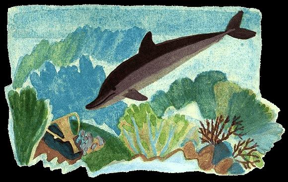 Дельфиния