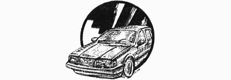 Приключения чёрной таксы