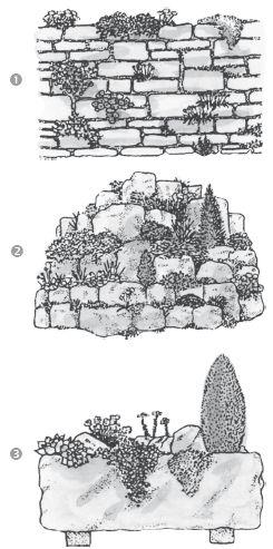 Современный справочник фермера и садовода