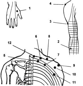 Точечный массаж при шейном остеохондрозе на руках, на плечах и спине.