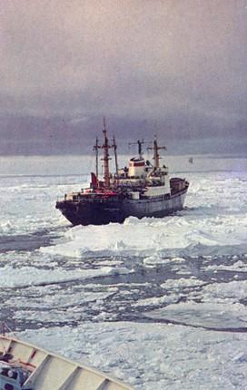 460 дней в Четвертой Советской антарктической экспедиции