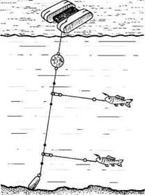 Жерлицы для летней рыбалки своими руками