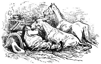 Хитроумный идальго Дон Кихот Ламанчский. Часть 2
