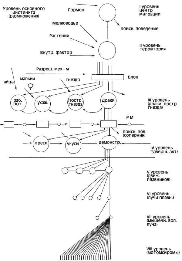 Основные положения концепции Лоренца