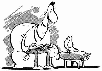 Как научить собаку танцевать, или Спортивная дрессировка собак